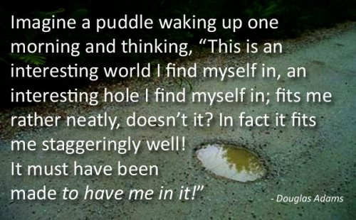 Well, if a puddle actually woke up and thought anything, it would be entitled to that opinion.
