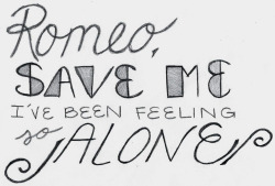 lyrics taylor swift love story Fearless love story lyrics