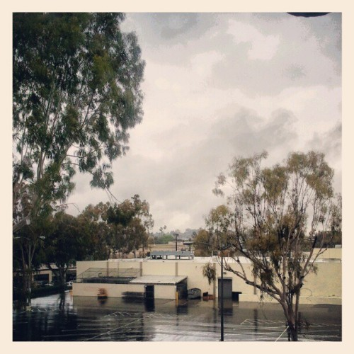 Rainy Friday (Taken with instagram)