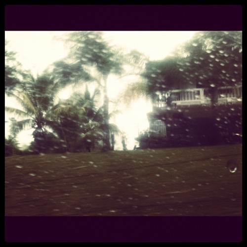 #house #trees #nature #raindrops #laspiedras #puertorico  (Taken with instagram)
