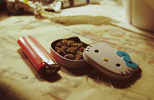 tumblr m2fwwpOlQ81r1pvnoo1 500 jpgGirly Weed Tumblr