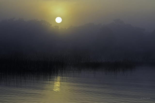 "Lake Istokpoga 4-3 Foggy Morning  ""Explored"" by stan hope on Flickr."
