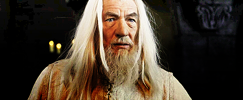 So it feels like it's been a bajillion weeks since I've seen Gandalf so I'm rebagelling a few pictures. YES GOOD.