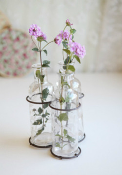 Ivy Leaves Glass Bottle Set from: First Fashion, Then Bridal, Now Home Decor? Why I Love Ruche (And You Should Too.)