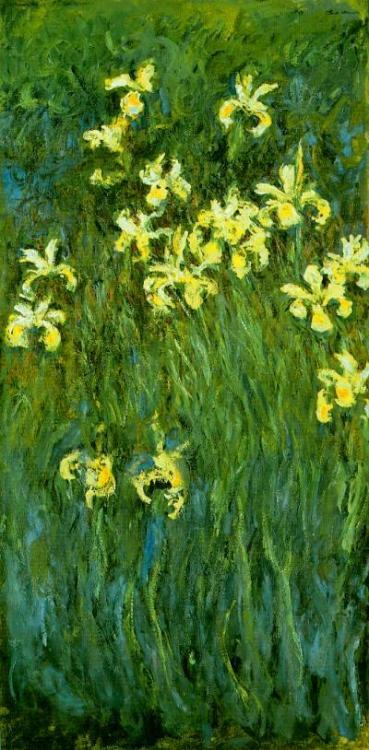 "yama-bato:  ""Yellow Irises"", Claude Monet 1914, oil on canvas 200 x 100cm, National Museum of Western Art, Tokyo Japan. Giverny"