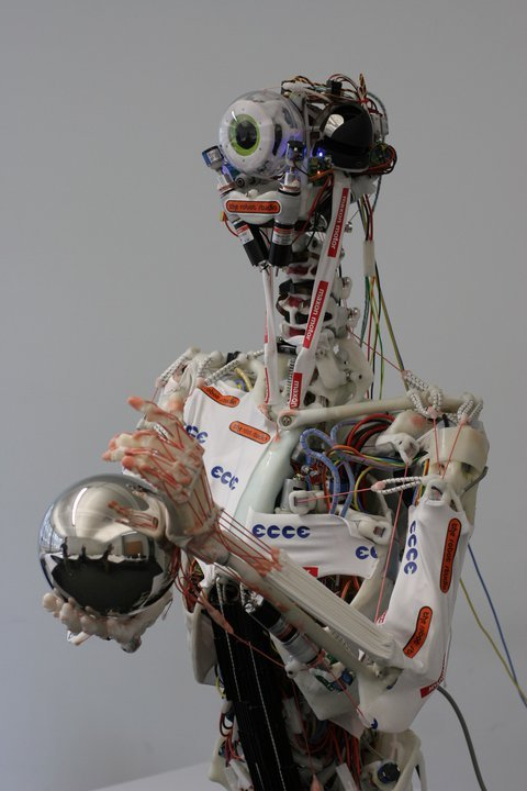 (via Eccerobot, A Robot Designed After the Human Body)