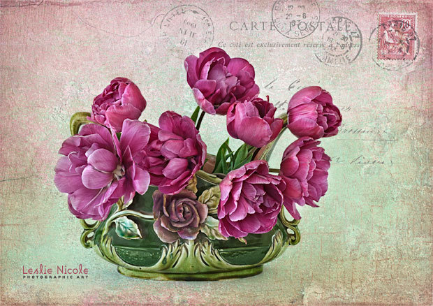 Tulips in a Vintage Cache Pot. Textures and overlay my French Kiss Collections.