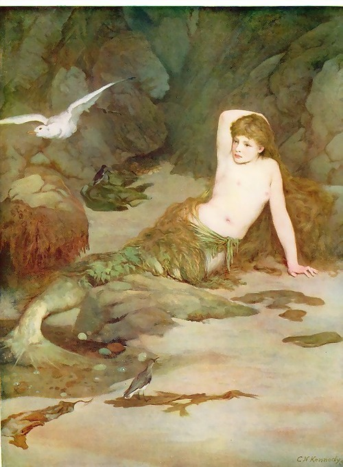 """The Mermaid"" by C.N. Kennedy"