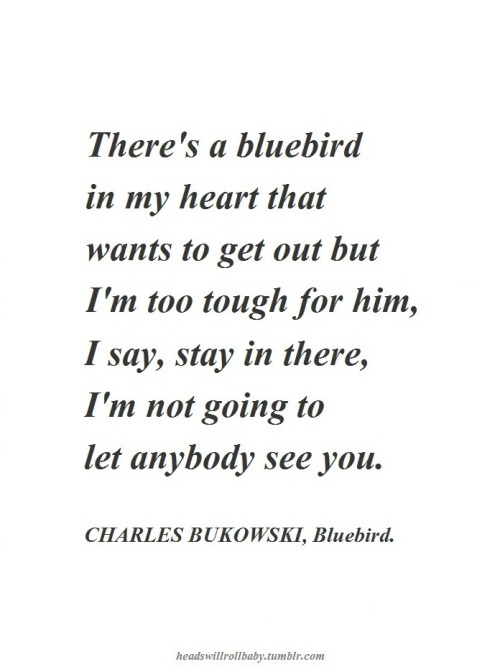 Oh Bukowski, why did you have to tell them about our bluebird.