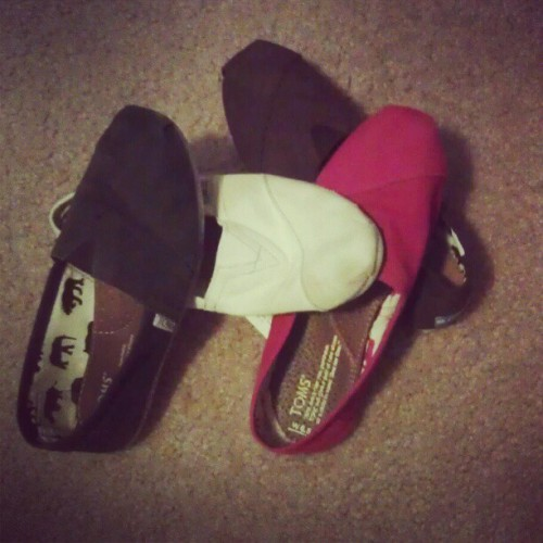 All my toms :3  (Taken with instagram)