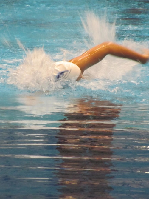 http://brighteyestaintedlies.tumblr.com Swimming! Awesome form! Good job!