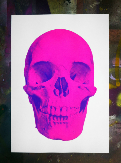 Pink skull. My new screen print on Somerset satin paper.