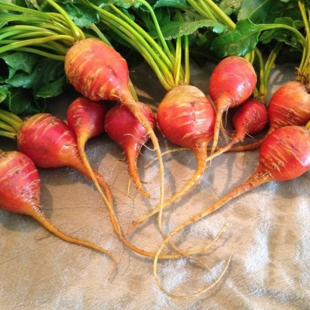 #beets  (Taken with instagram)