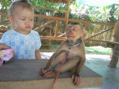 babytwaaat:  reeeiaa:  LOOL!  that kid's face  the monkey's face omfg
