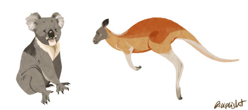 Drew a koala and a kangaroo because I felt I needed to draw some animals! Click for High-res close up! Its kinda hard to see their features otherwise :)