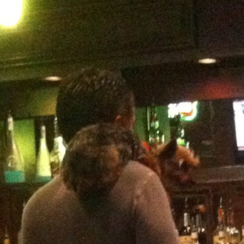 Why does he have a dog riding his shoulder (Taken with instagram)