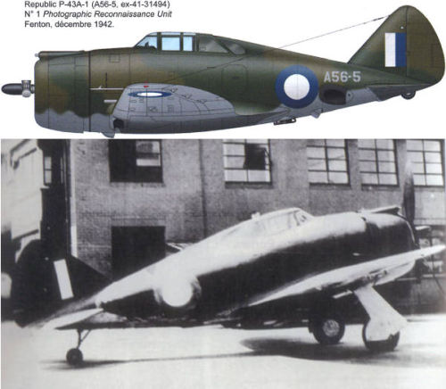 Republic P-43 Lancer: Photo-Recon aircraft in RAAF service 1942