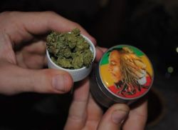 rondellolivertheboss:  Marley Grinder