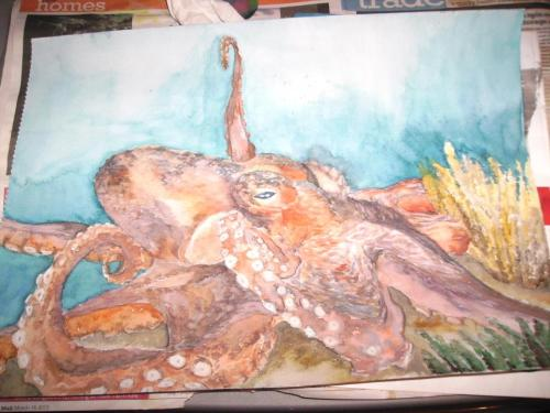 An Octopus and Some Coral ~ an A3 watercolour painting I did yesterday. Better pictures coming soon.