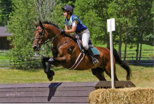 This I me and my horse, Puck, at GMHA in 2007, competing at Training level. I haven't been able to event lately because I am away at school, and just a few months ago Puck had to be put down, but he was amazing and will never be forgotten <3 Sorry for your loss love…thanks for sharing him with us!  Hope you get back into it here soon! -Bee