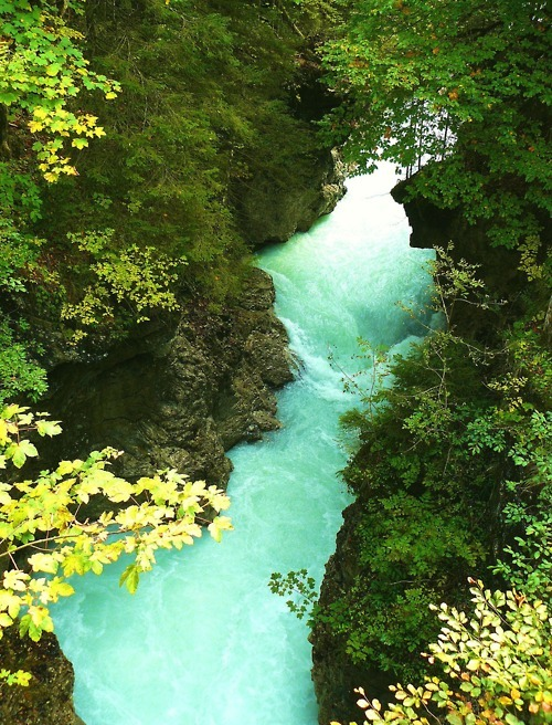 Rissbach Gorge, Germany  photo via eco