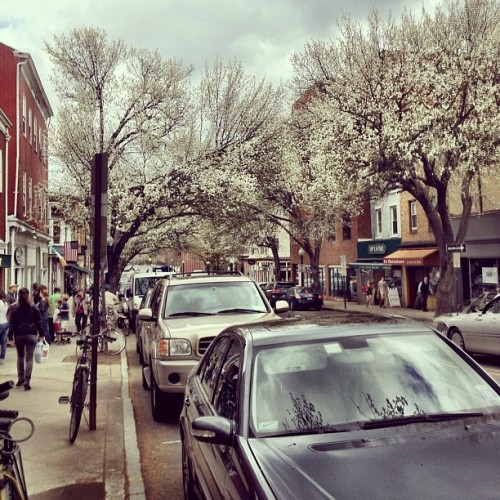 Spring time, Witherspoon street. (Taken with instagram)