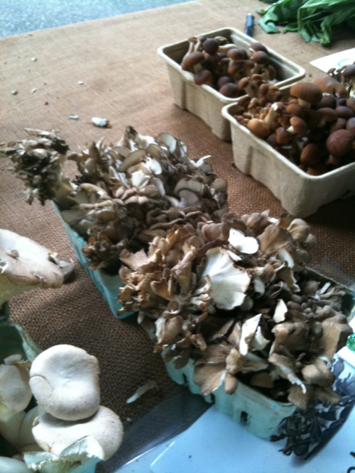Fresh maitake shrooms for tomorrow's frittatas at Scarborough Fair Bed & Breakfast.