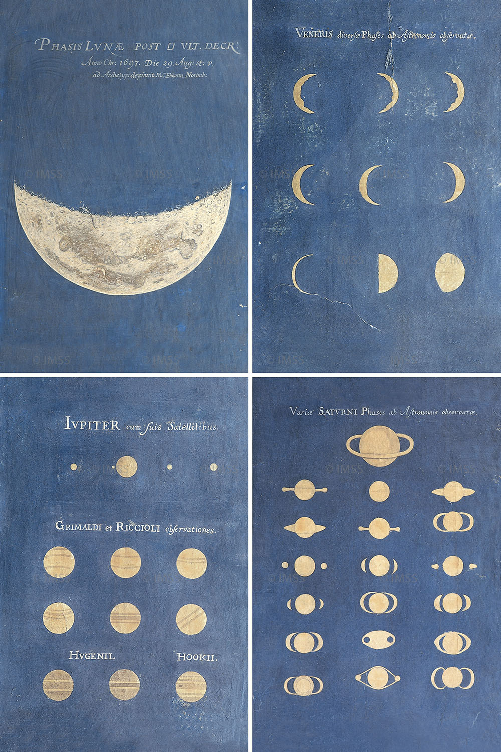 elliesmallz:   Phase Of The Moon. Phases of Venus. Aspect Of Jupiter. Aspect of Saturn. Late 17th century - Bologna, Museo della Specola, Universita di Bologna.