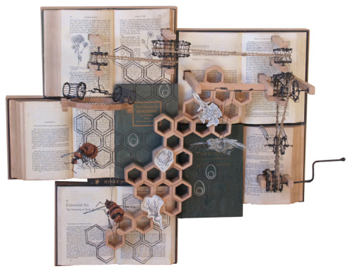 The Bird and the Bees by Casey Curran Art which moves: wood, wire, books, rope.