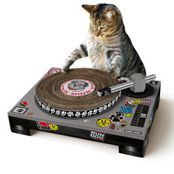 Cat DJ Scratching DeckWondering what your cat does while you're at work all day? (Besides being extra cute.) Don't be surprised when you set up Suck UK's Cat DJ Scratching Deck and find out that Kitty's scratching is far better than yours. She's been practicing on the neighbor's turntables! This deck come flat packed and folds together into a simple structure with a poseable tone arm and a top that spins as your cat paws at it. Yes, really.