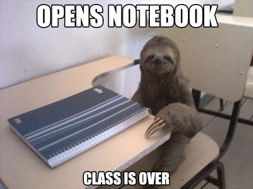 School Sloth [flyingscotsman:via]
