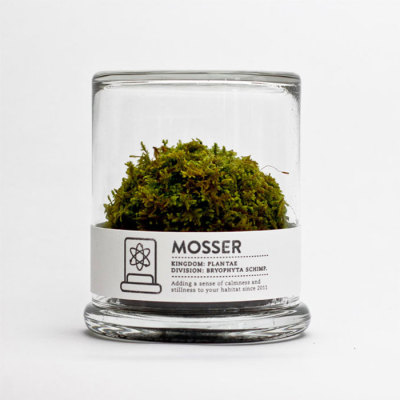 Packaging Monday: Mosser  It's a ball of moss, but it's a PRETTY ball of moss.