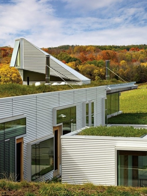 cabbagerose:  hillside house/ian macdonald via: blueverticalstudio