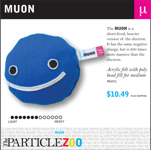 quantumaniac:  Muons In continuation with these fun little posts about particles, we direct our sights to the muon! It derives its name from the Greek letter mu (μ), which is used to symbolically represent it. The muon is an elementary particle that is really, really similar to the electron - with an equal negative charge to the electron and a spin of ½. It is classified as a lepton, which is a group of particles that is home to the electron, the tau, and neutrinos. As is the case with leptons, the muon cannot be broken down any further - it is fundamental.  As experiments have shown, the muon is unstable - possessing a mean lifetime of only about 2.2 µs (microseconds). All muons decay into three particles, an electron and two different types of neutrinos. The muon has a corresponding antiparticle as well - the antimuon (also known as the positive muon). Like all antiparticles, the antimuon the same mass and spin as its counterpart, but an opposite charge.  Muons have a mass of 105.7 MeV/c2, which is approximately 200 times the mass of an electron. Since the interactions are very similar, a muon can basically be thought of as a much heavier sister of the electron. Due to their mass, muons do not accelerate as sharply in electromagnetic fields and do not emit as much deceleration radiation, which allows them to penetrate far more deeply into matter than electrons.  P.S: Do you like the picture? Get awesome plush particles from the Particle Zoo!