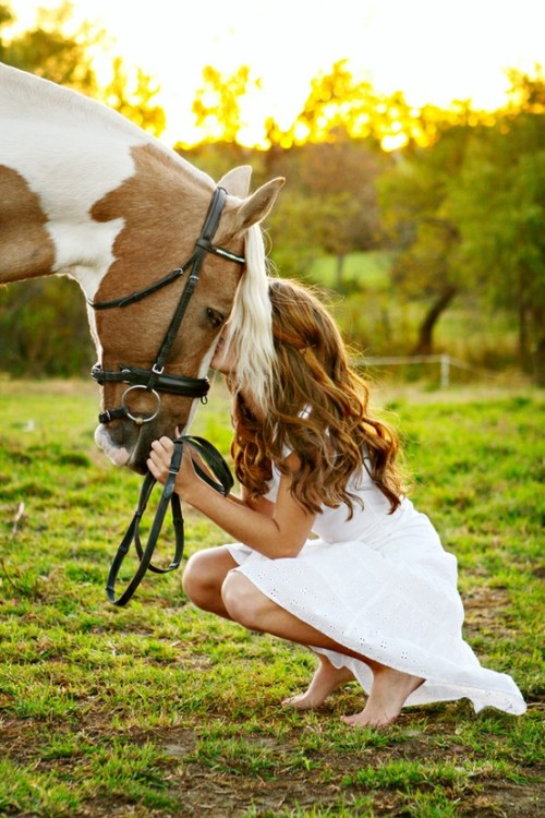 (via ♥*¨*•.¸¸♥ HORSES ♥*¨*•.¸¸♥ / Unconditional love)
