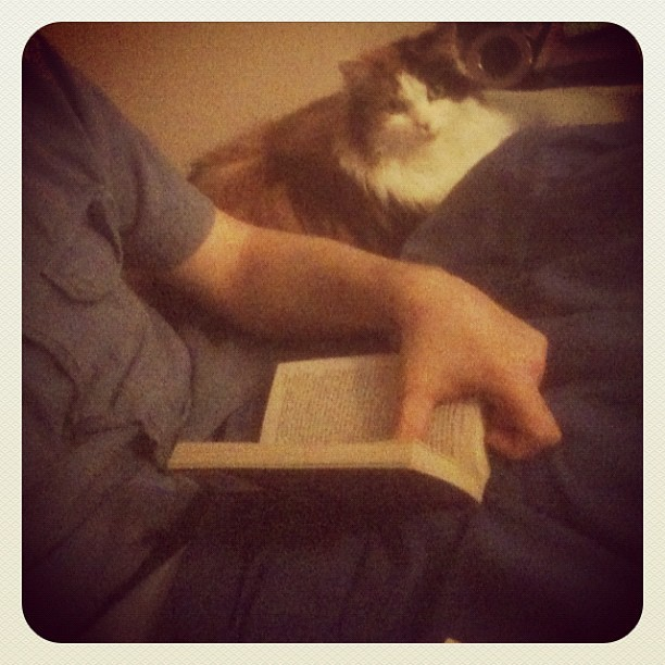 Just reading with my cat. (Taken with instagram)