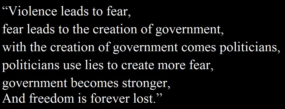 "thesilentanarchist:  ""Violence leads to fear, fear leads to the creation of government, with the creation of government comes politicians, politicians use lies to create more fear, government becomes stronger, And freedom is forever lost."""