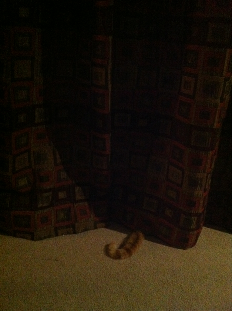 i'm sooooo good at hiding!