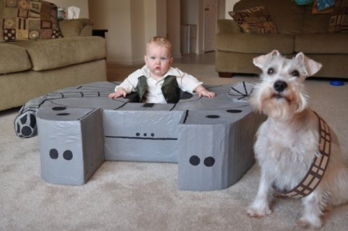 geekmythology:  (via Baby Han Solo & Chewie [Pic])  portrait of what future wife & I will be doing to our future kid(s)…