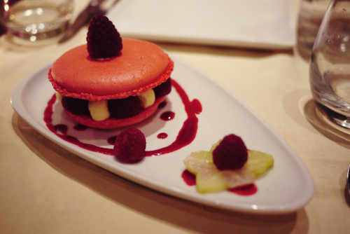 Giant Raspberry Macaron Ice-Cream Sandwich