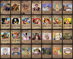 theyaiberpages:  One Piece wanted posters! Sanji's is hilarious.