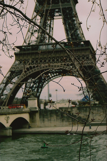 Twigs Weaving before the Effiel Tower by Christina_Anne on Flickr.