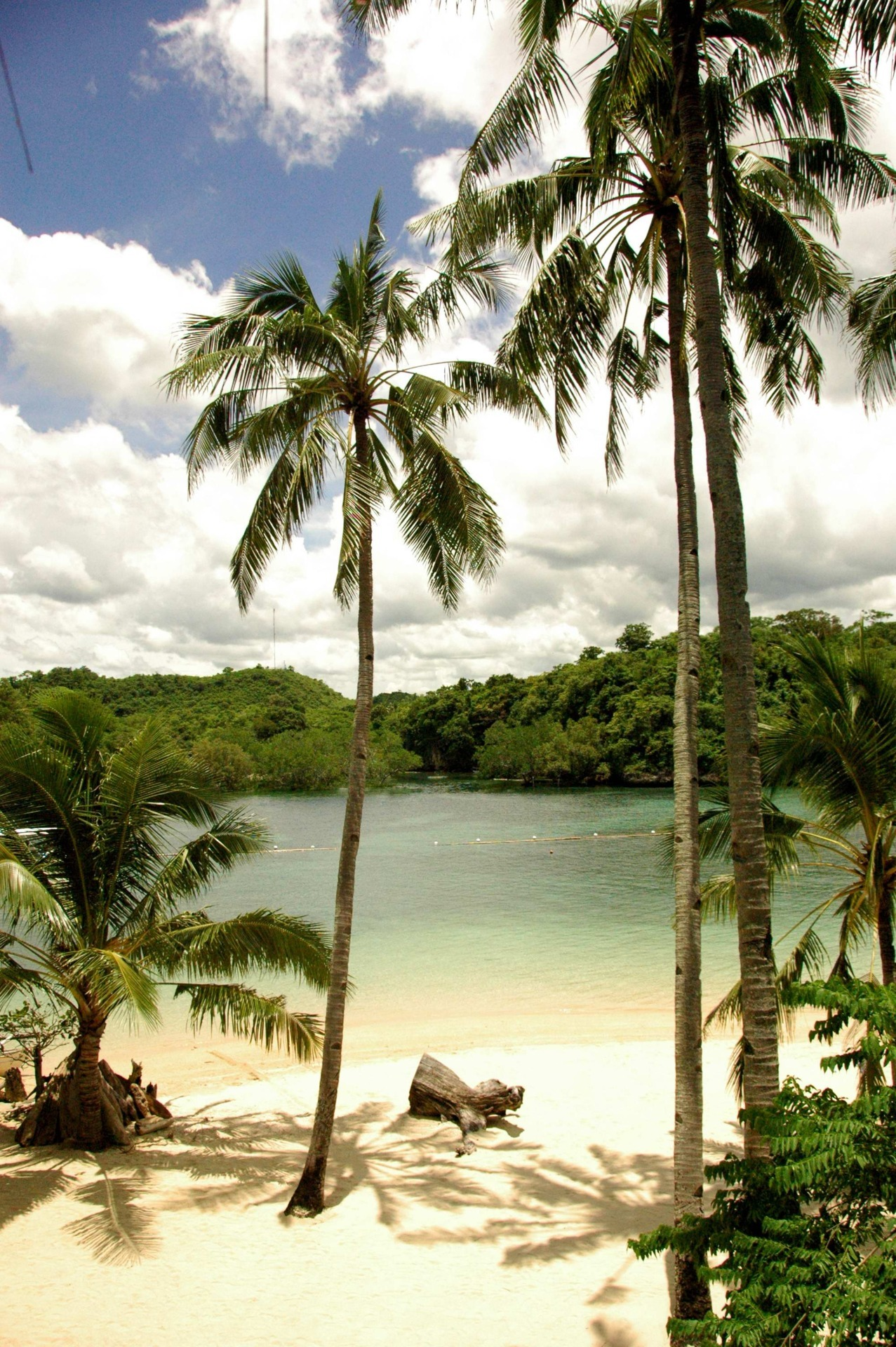 travelingcolors:  Isla Naburot, Guimaras | Philippines (posted and taken michaelaferrer, excellent photography!)