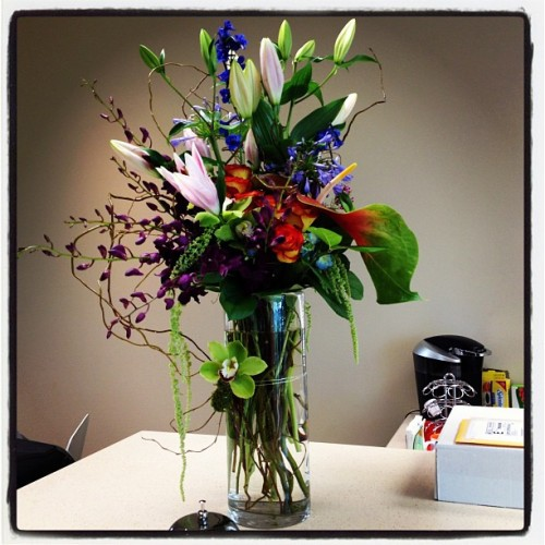 New office, gorgeous welcome flowers! allisonwendy, instagr.am