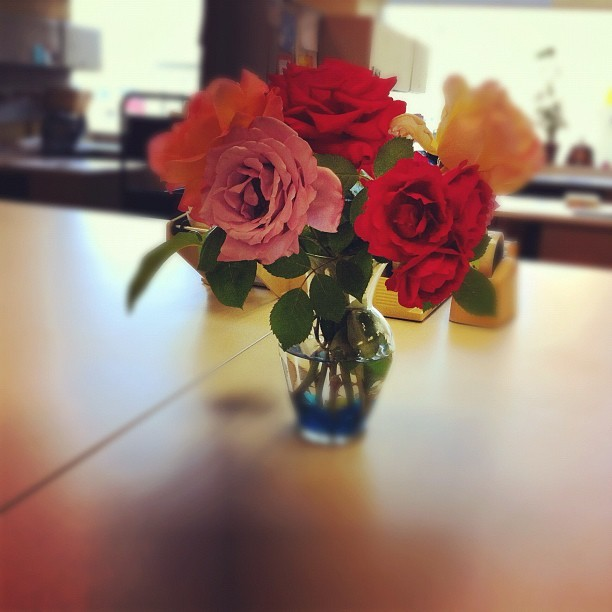 Beautiful roses were placed in our staff workroom (Smells like roses)👍 (Taken with Instagram at Windmill Library & Service Center)