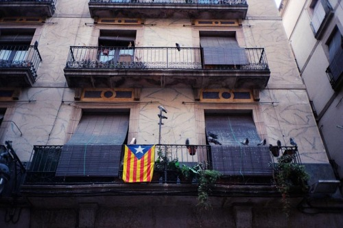 willrobson-scott:  Barca
