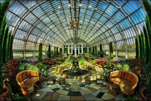 sunflowersandsearchinghearts:  Pinterest - Park Zoo Conservatory via Leigh Malmede