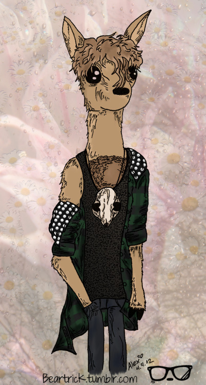 ~Baby Alpaca~ He's currently my inspiration and his songs are beautiful. Give him a listen: babyalpa.ca