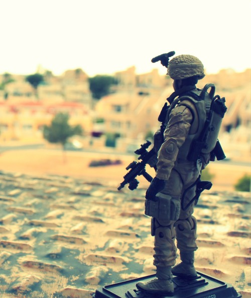 Own Collection: Seal Team Deployed 2012 - custom 1:18 Navy Seal figure