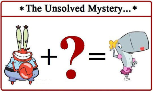 Mystery solved: ADOPTION